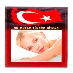 - HS 46 Cam Çerçeve 10x15 Türkiye Desenli
