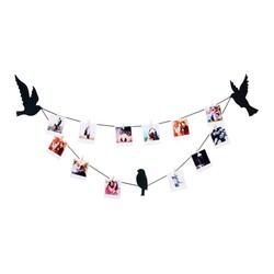 - İpli Mandallı Fotoğraf Çerçeve Teldeki Kuşlar