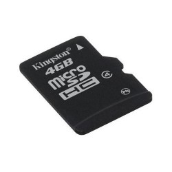 - Kingston 4 GB SD Micro Card
